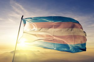 Transgender Flag Flying